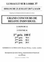 Concours de belote le 23 juillet 2017 à 37400 Lussault sur Loire
